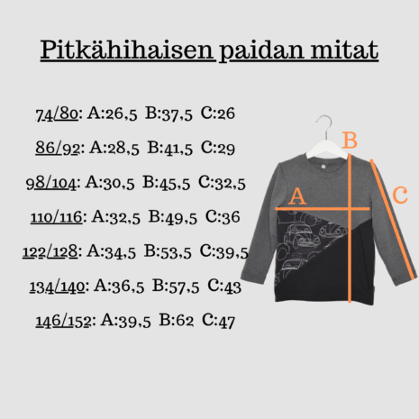 paidan mitat